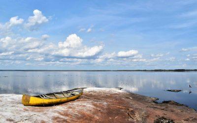Laguna Marfil: Agua, gente y biodiversidad