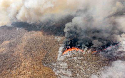 Megaincendios en la Chiquitania: Su significado en el escenario global